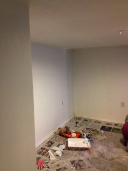 basement bedroom repainting