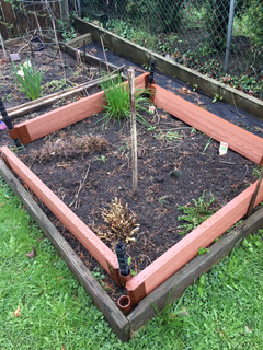 Store-boughten raised bed